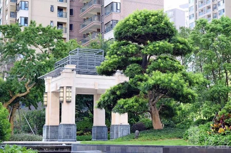 佳兆業大都匯_中山|首期10萬|即買即住|鐵路沿線|香港銀行按揭