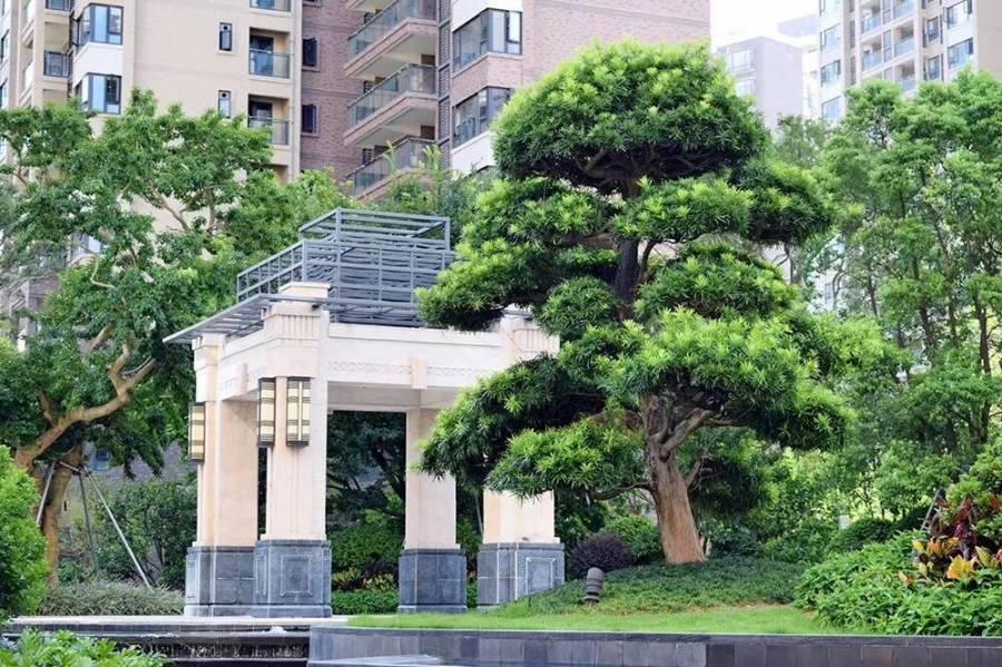 星薈公館_中山 首期10萬 深中大橋出入口與香港深圳一橋之隔 香港銀行按揭